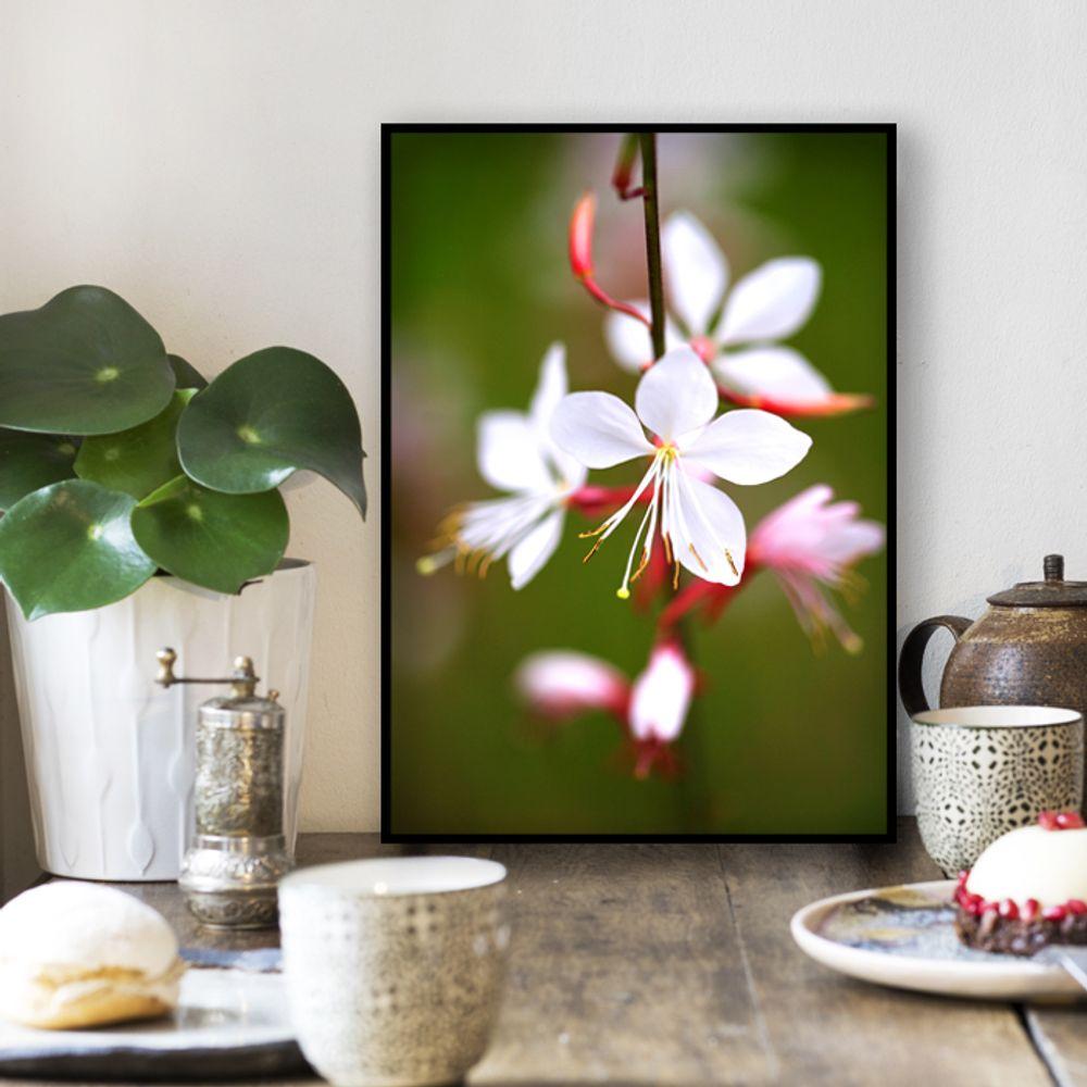 사진 인테리어 액자  꽃 식물 사진 작품 A3블랙AL5
