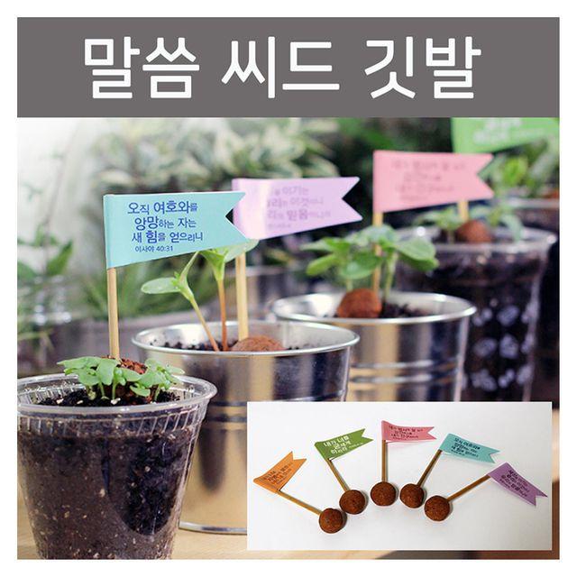 씨드깃발 주일학교 선물 식목일 식물키우기 행사