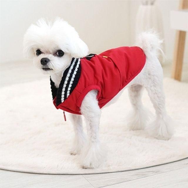 패리스독 머스크 패딩 레드 강아지옷 겨울옷