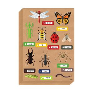 곤충 스티커_5매 스크랩북 만들기재료(5개묶음)