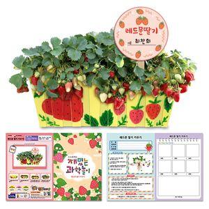 나만의 딸기밭 만들기(기록지포함) 3개묶음