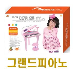 재이의 그랜드피아노)MP3기능 마이크기능 자동연주