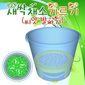 새싹 채소기르기 씨앗발아기 (5인용)