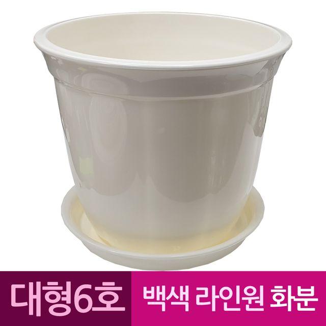 W 라인원형 백색 도자기느낌 플라스틱화분 6호