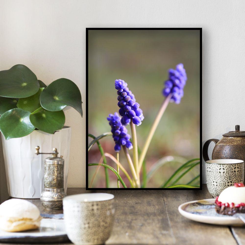사진 인테리어 액자  꽃 식물 사진 작품 A3블랙AL8