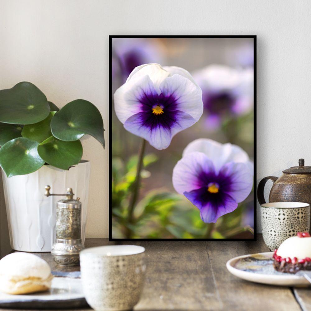 사진 인테리어 액자  꽃 식물 사진 작품 A3블랙AL2