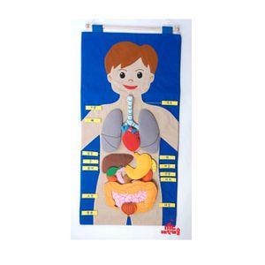 (매직캐슬 차트 신체기관한글)신체기관 학습용 헝겊 부직포 신체 학습놀이 어린이집