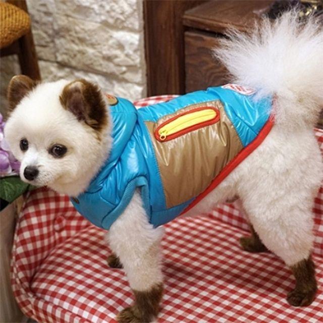 강아지옷 패리스독 아이두 패딩  블루