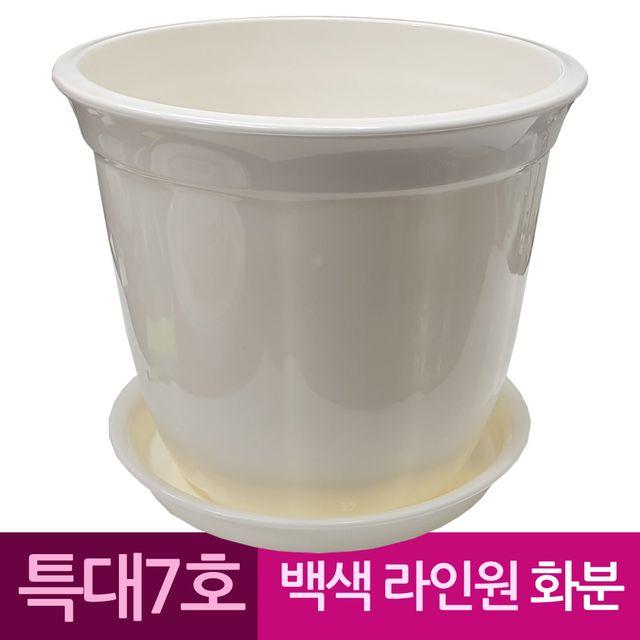 W 라인원형 백색 도자기느낌 플라스틱화분 7호