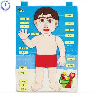 차트 나의 몸 신체판 헝겊학습벽보 벽보