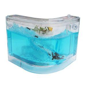 개미집 개미관찰 ㄱ자형하우스 곤충키우기 개미키우기