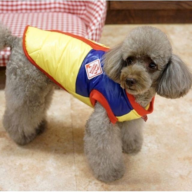 패리스독 강아지옷 옐로우 싸인램프 패딩 겨울옷