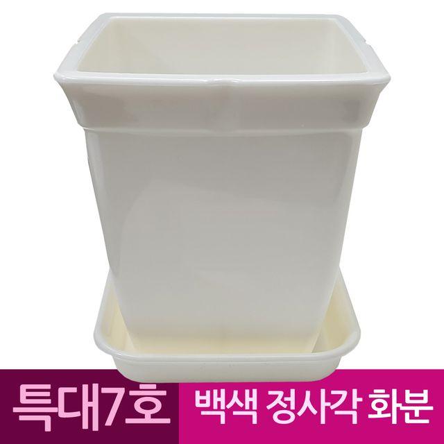 W 정사각 백색 도자기느낌 플라스틱화분 7호