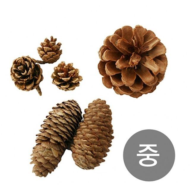 천연 솔방울 소나무 만들기 크리스마스 나무 공예 트리 자연 장식 미니 나무 원목 소품 교구 학습 중 [제작 대량 도매 로고 인쇄 레이저 마킹 각인 나염 실크 uv 포장 공장 문의는 네이뽕]