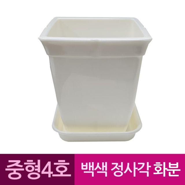 W 정사각 백색 도자기느낌 플라스틱화분 4호