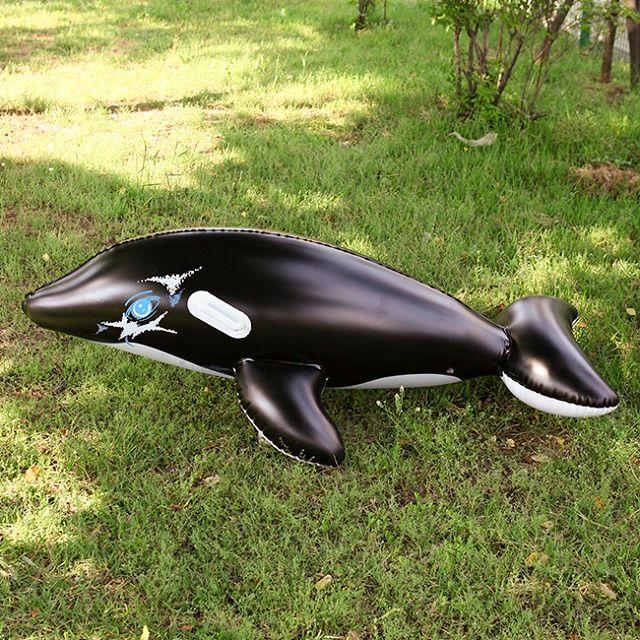 [현재분류명],돌고래 물놀이용튜브(검정)160cm,