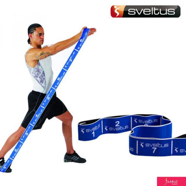 SDM 스벨투스 엘라스티밴드 20kg 블루 포스터 DVD
