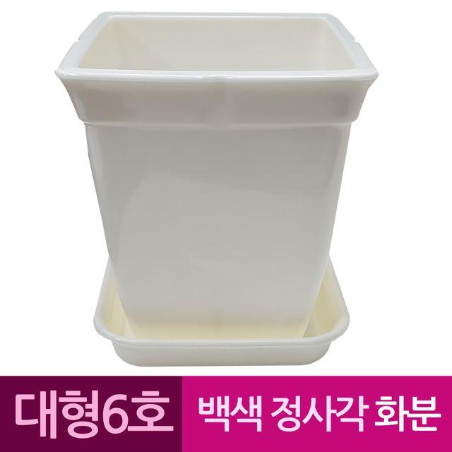 W 정사각 백색 도자기느낌 플라스틱화분 6호