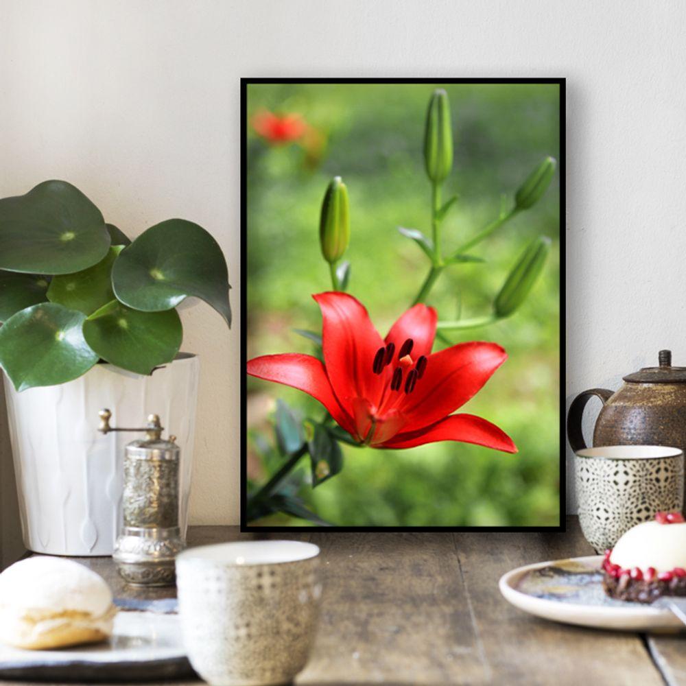 사진 인테리어 액자  꽃 식물 사진 작품 A3블랙AL1