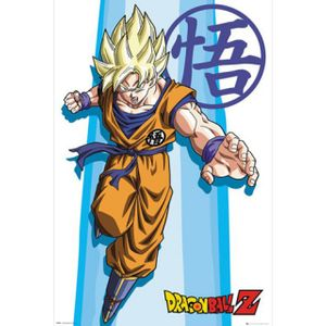 FP4093 드래곤 볼 Z SS Goku (61X 91)(액자상품)