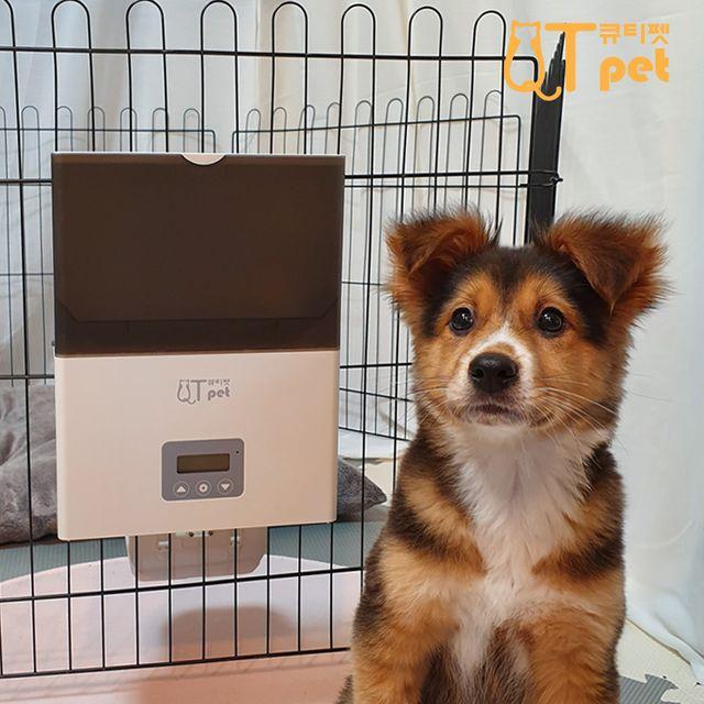 큐티펫 QTPET F4 LCD 케이지 애완동물 자동 급식기