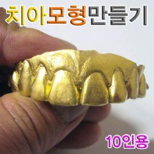 치아모형만들기 10인용 만들기장난감 과학키트