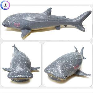 소프트해양(중)-고래상어