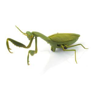 (적외선) 자이언트 시리즈 사마귀 RC (CBT889142)곤충