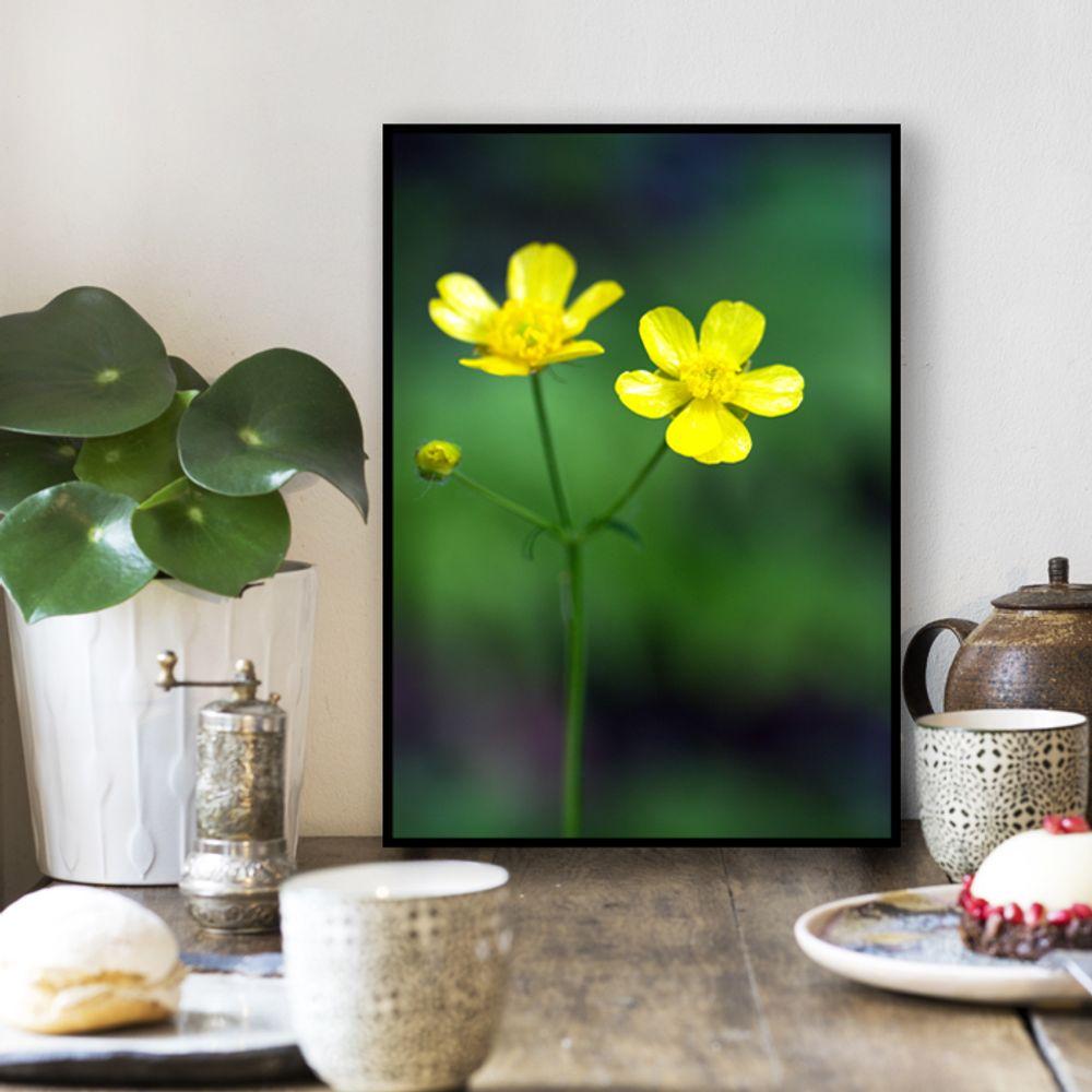 사진 인테리어 액자  꽃 식물 사진 작품 A3블랙AL4
