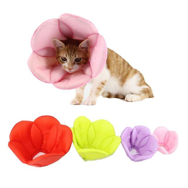 강아지 고양이 핥음방지 넥카라 S