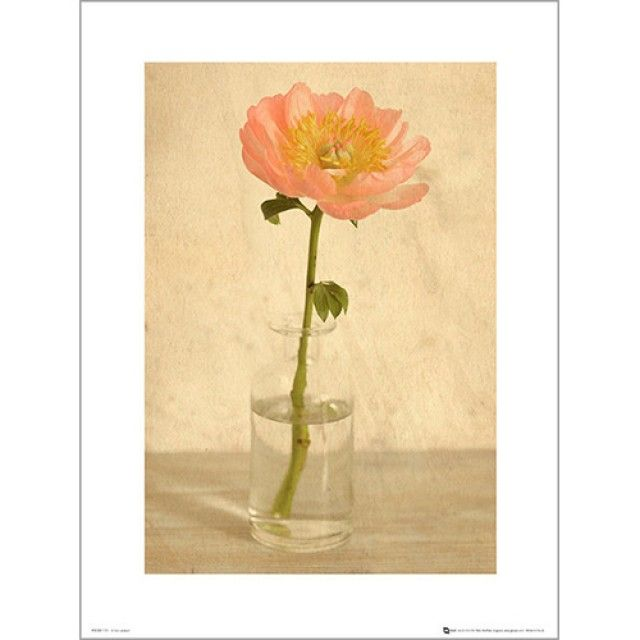 PDH01072 Pink flower bottle (40x50) (포스터만)