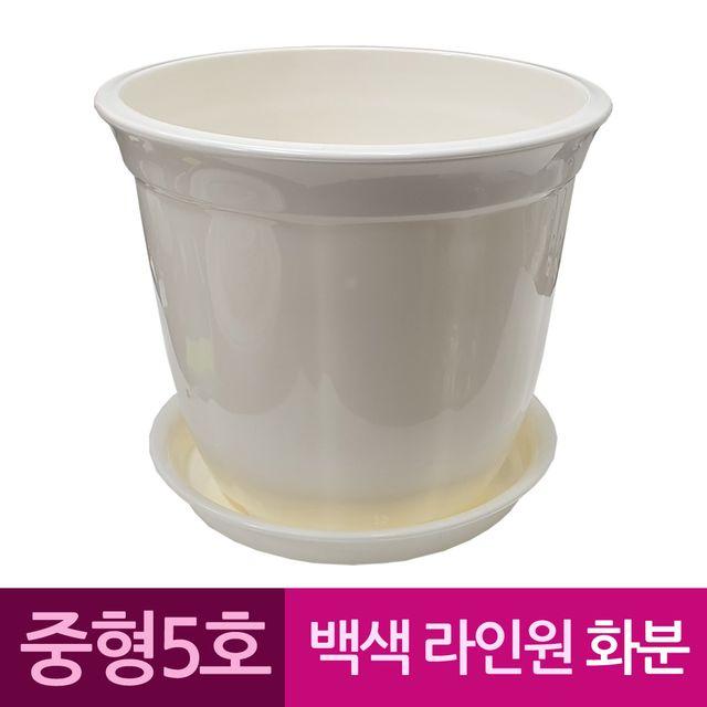 W 라인원형 백색 도자기느낌 플라스틱화분 5호