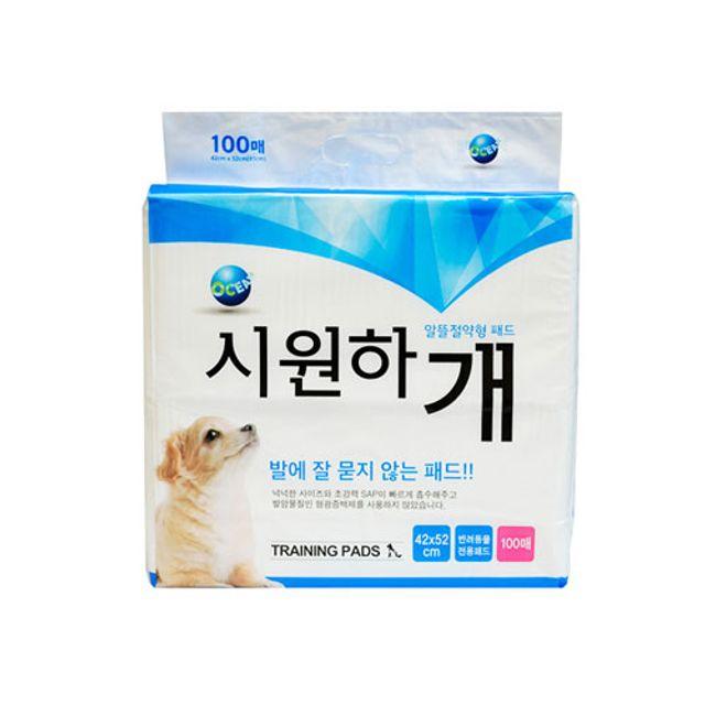 강아지 고양이 위생 배변 알뜰절약형패드 100매 1 EA