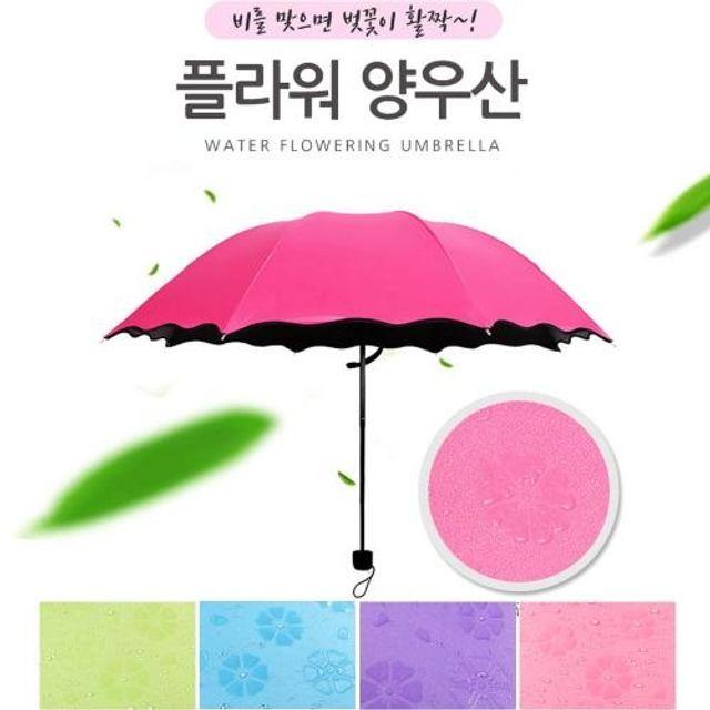 비오면 벗꽃이 플라워 암막 양우산 양우산