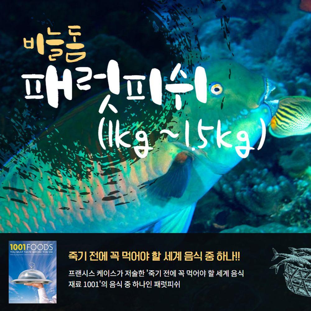 자연산 비늘돔 패럿피쉬 1마리(1-1.5kg) 손질냉동생선