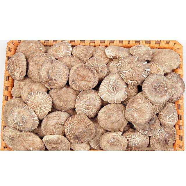 DHD 동고 표고버섯 세트 1호