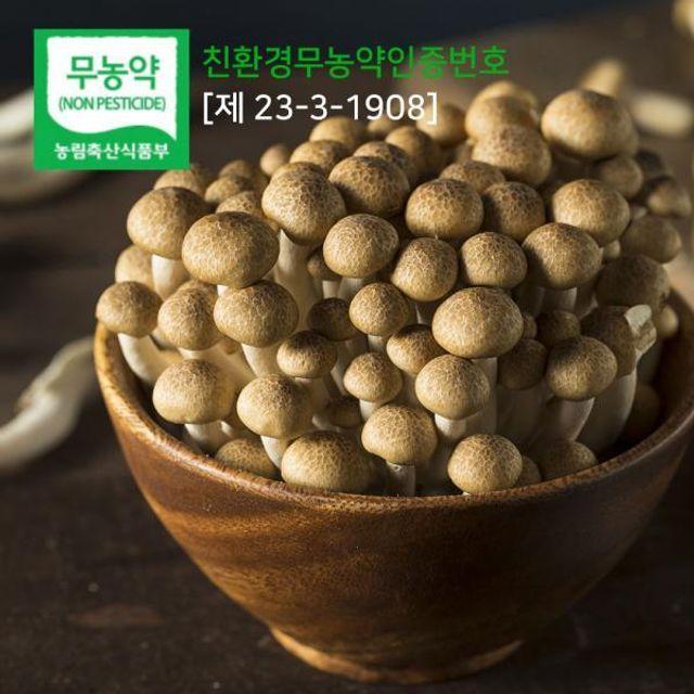 갈색 만가닥버섯 4kg