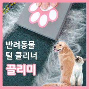아이티알,MZ 애견 애묘 털청소 클리너 청소용 스펀지