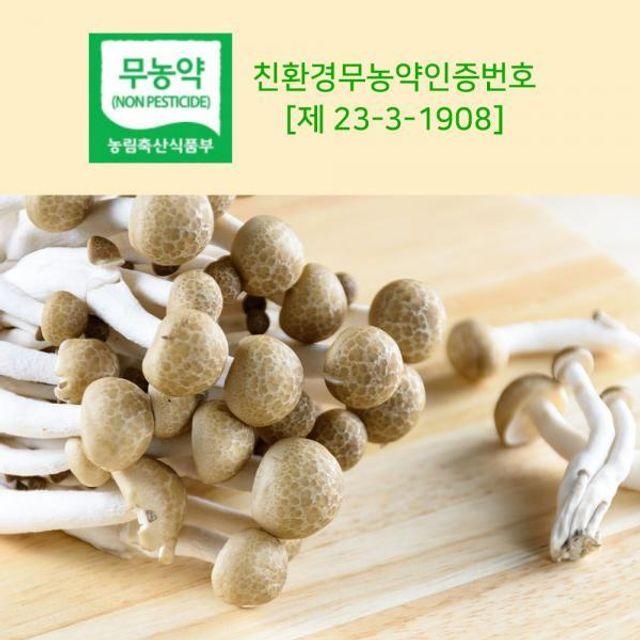갈색 만가닥버섯 2kg
