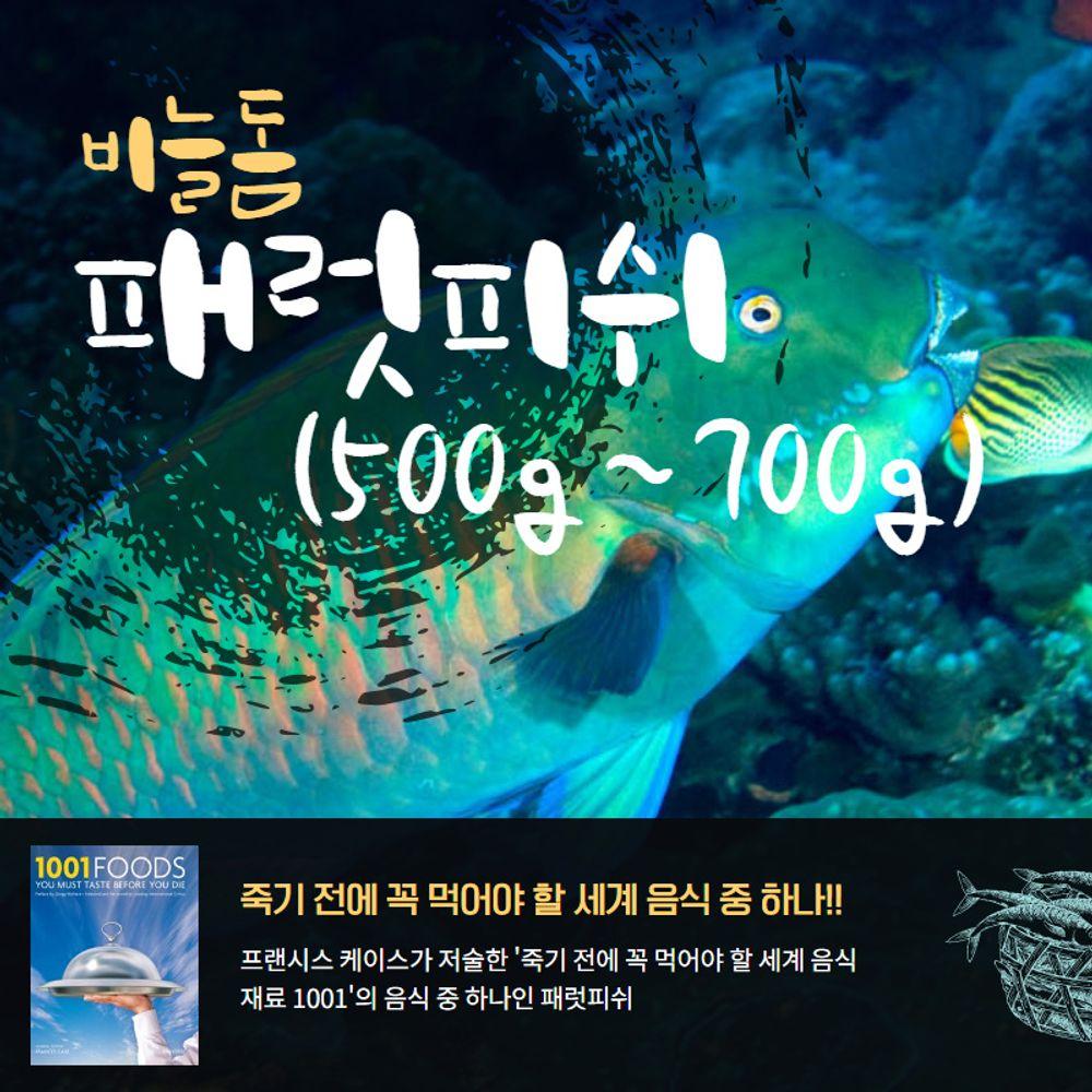 자연산 비늘돔 패럿피쉬 1마리(500-700g)손질냉동생선