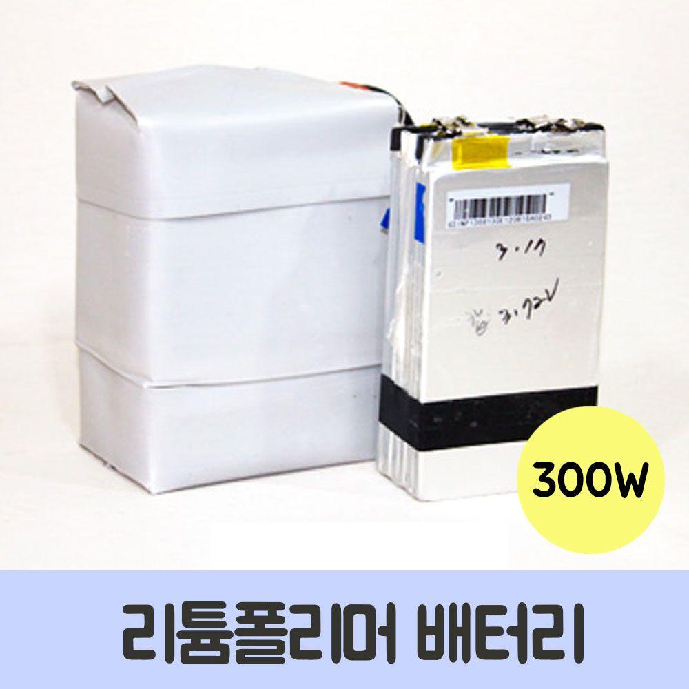 리튬폴리머 배터리 300W