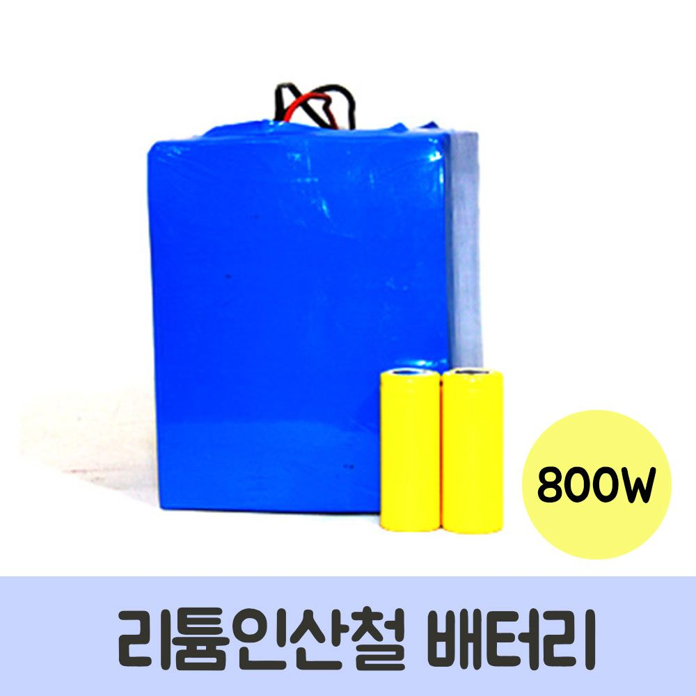 리튬인산철 배터리 800W