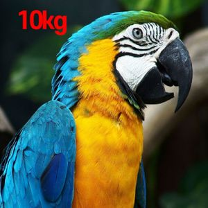 아이티알,MZ 고소한 브라질원두 싱글오리진 홀빈 대용량커피 10kg