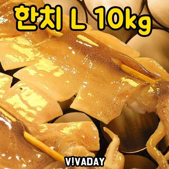 DHD 한치 L 10kg