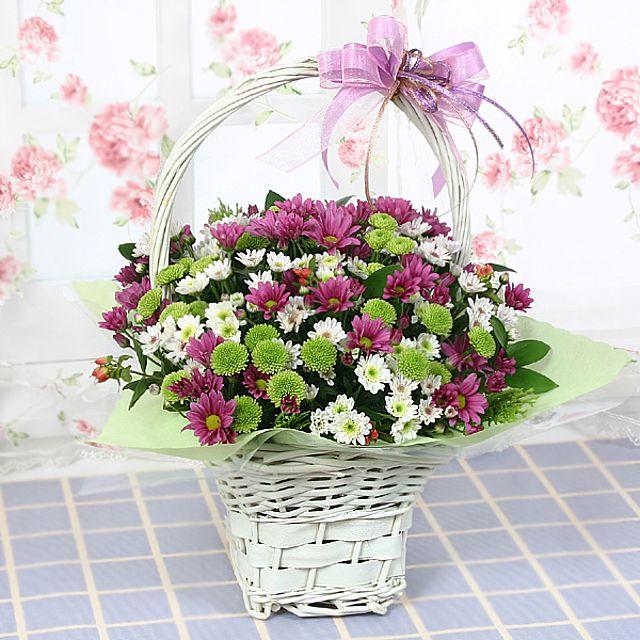 난괜찮아 꽃바구니-대급 3시간배송 전국 꽃배달 고백 결혼 기념일 감사선물