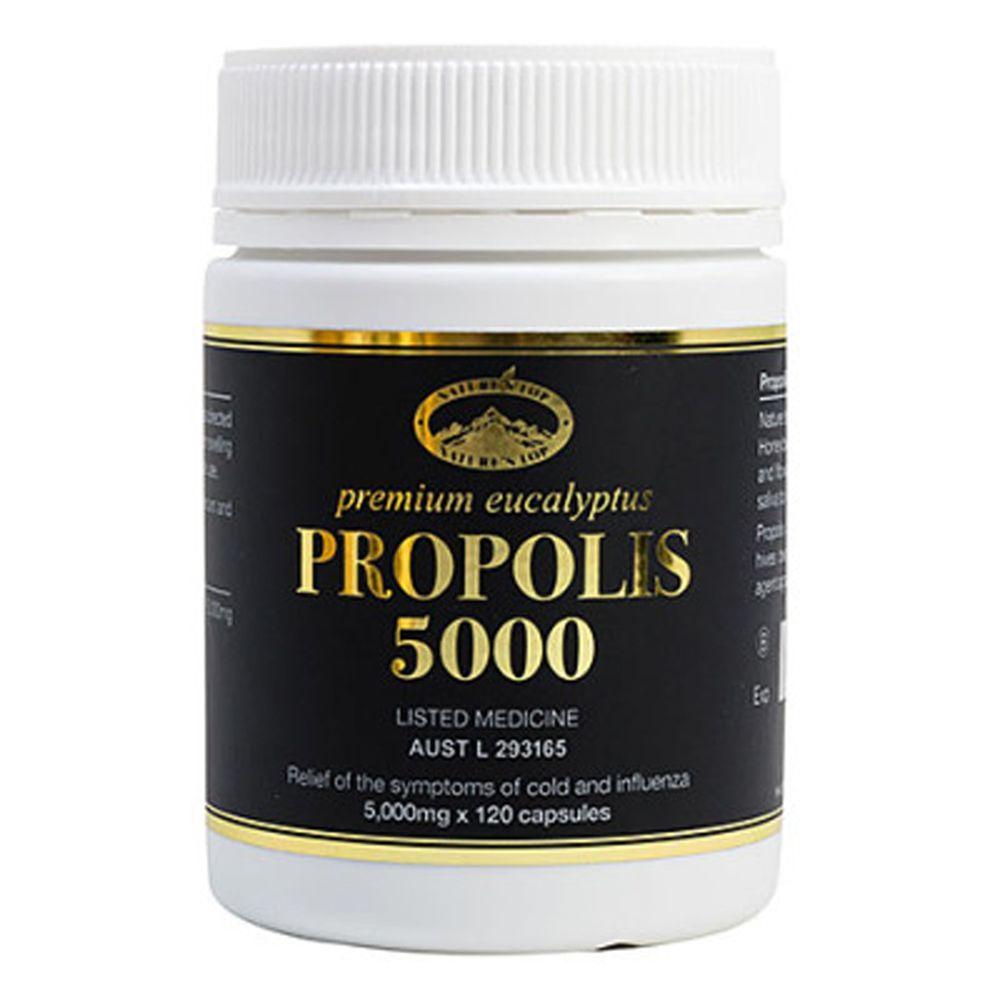 호주 네이쳐스탑 유칼립투스 Propolis 5000 120캡슐