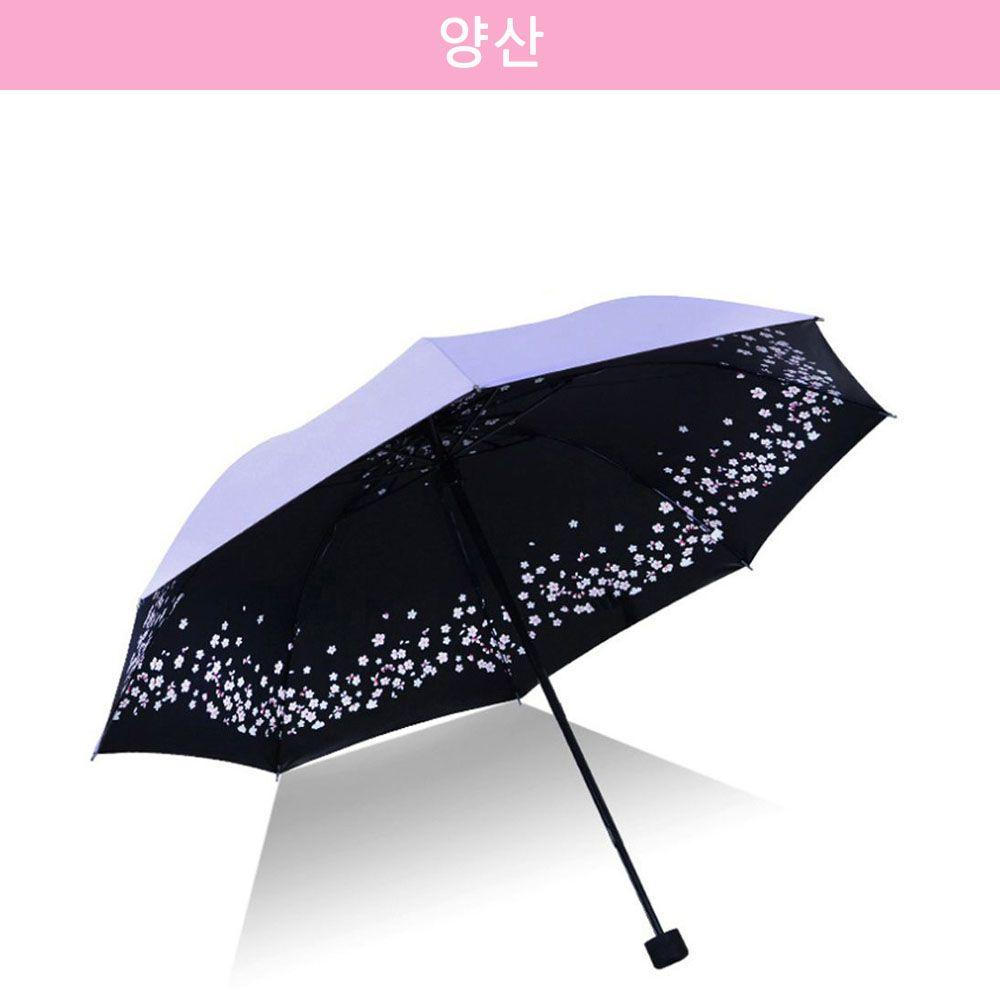 자외선 차단 파스텔톤 벚꽃 암막 양산/우산 라벤더