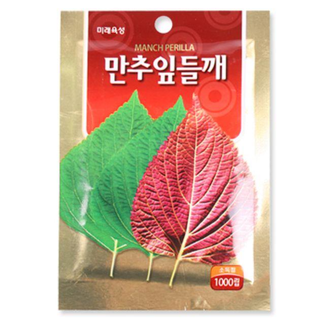 만추잎들깨