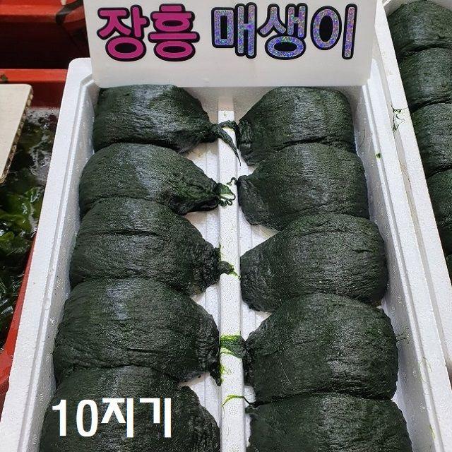 바다의 맛과향 매생이 3kg이상(10지기)