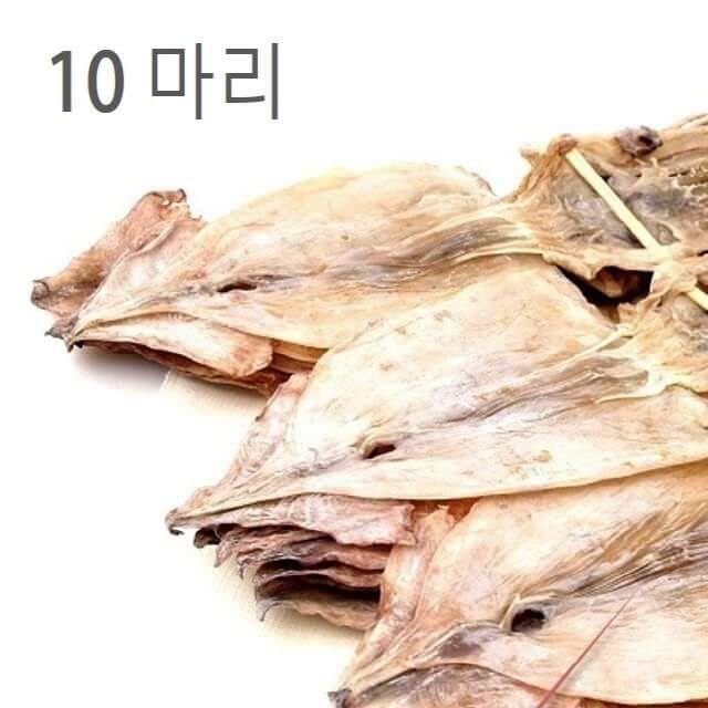 동해 마른오징어 800g 10마리